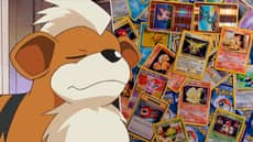 Young Pokémon Fan Sells Card Collection To Save Puppy's Life