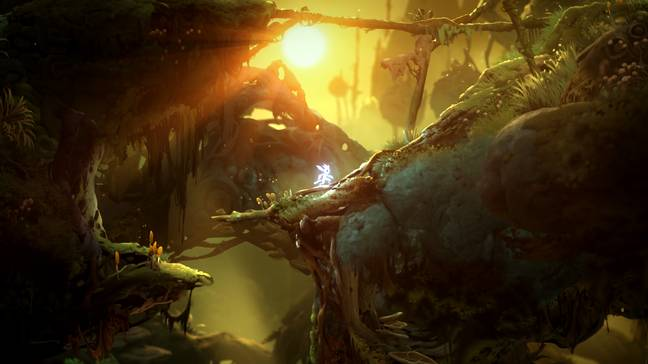 Ori and the Will of the Wisps / Credit: Xbox Game Studios, Moon Studios