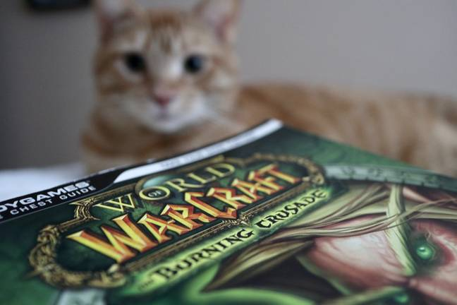 A cat with a 'World of Warcraft' guide book / Credit: WTFast via Unsplash