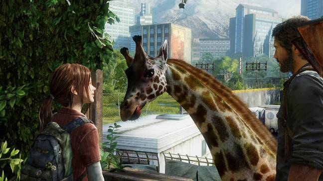 The giraffe scene in 'The Last of Us' / Credit: Sony Interactive Entertainment, Naughty Dog