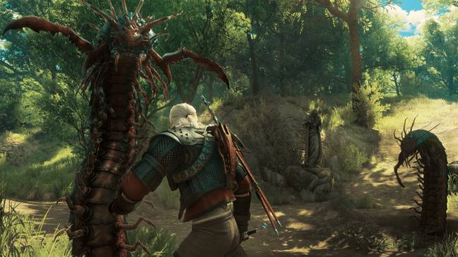 The Witcher 3 / Credit: CD Projekt RED