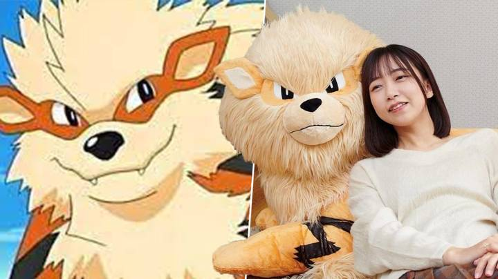 Real-Life Arcanine Pokémon Plushie Is The Size Of An Actual Dog