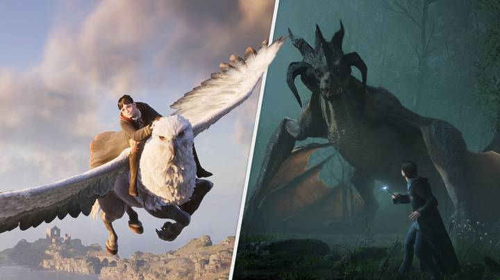 'Hogwarts Legacy' Could Have Dragon Mounts, If The Fans Get Their Way