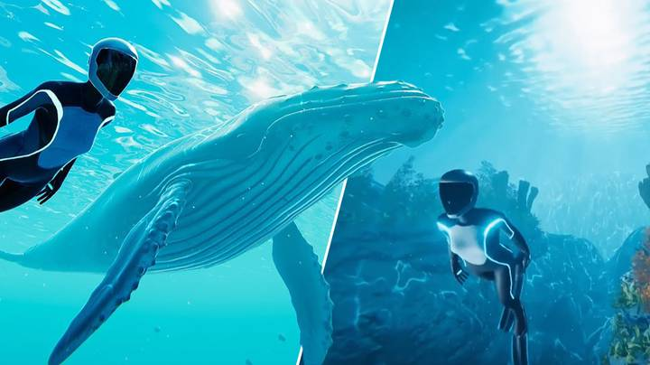 Hang Out With Whales In Chill New Diving Game 'Beyond Blue'