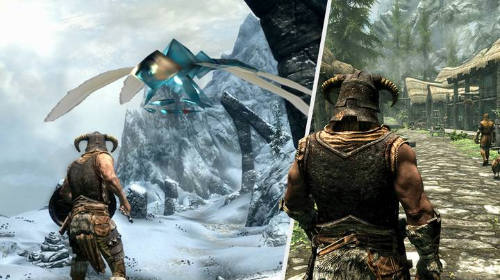'Skyrim' NPC Gets Kidnapped By Dragonfly In One Of The Greatest Glitches We've Seen