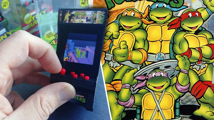 These Arcade Machines For Ants Actually Work, And Are Pretty Neat