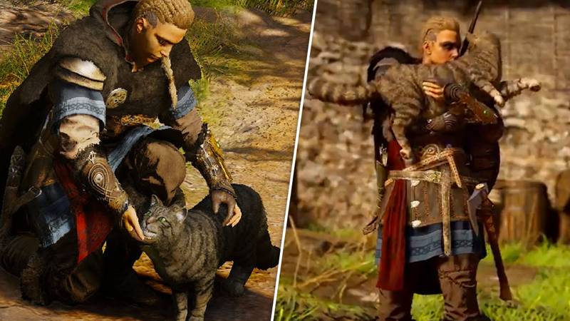 'Assassin's Creed Valhalla' Will Let You Hold And Pet ALL The Cats