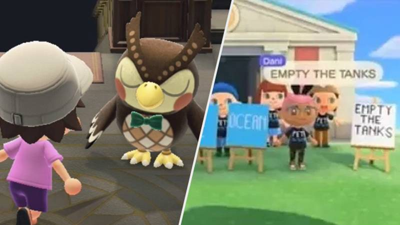 PETA Protests 'Animal Crossing' In-Game Museum, To The Confusion Of Everybody