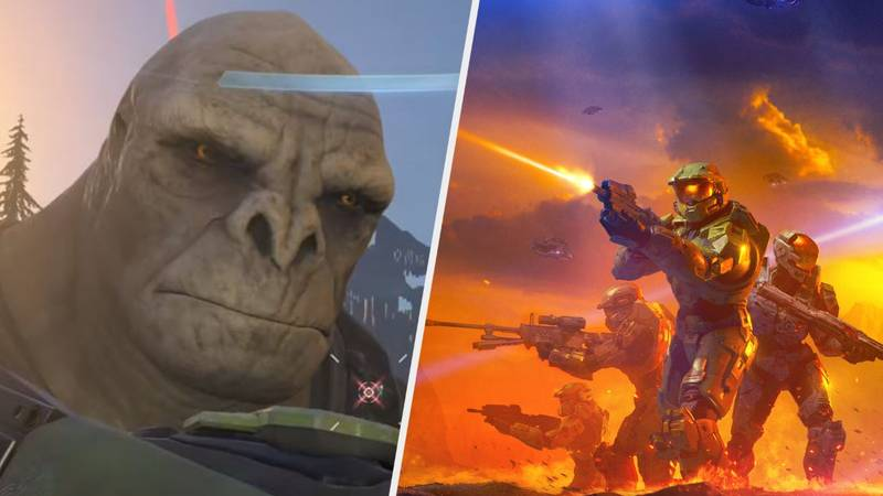 Halo Studio Dismisses Rumours That 'Infinite' Will Have Battle Royale Mode